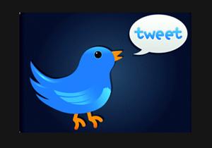 סוף לציוץ? טוויטר