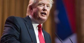 קיבל רוח גבית מפוטין בבחירות 2016? דולנד טראמפ. צילום: BigStock
