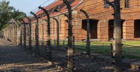 תיאסר הכחשת שואה. צילום אילוסטרציה של מחנה אושוויץ: BigStock